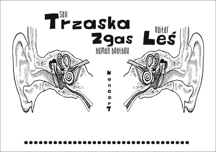 trzaska_zgas_les
